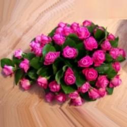 Hart roze roos